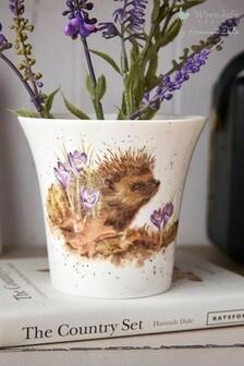 Royal Worcester Wrendale Hedgehog Flower Pot