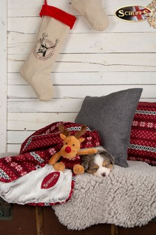 Santa Paws Blanket & Reindeer Gift Set by Scruffs®
