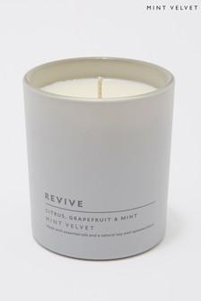Mint Velvet Citrus And Mint Candle