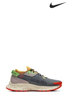 Nike Grey Trail Pegasus Gortex Trainers