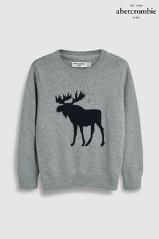 Abercrombie & Fitch Grey Moose Jumper