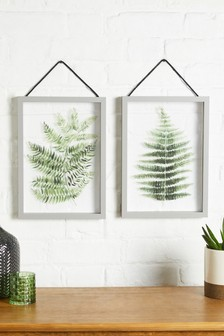 Set Of 2 Floating Botanical Hanging Frames