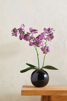 Artificial Orchid In Pot