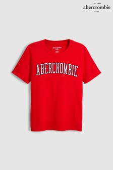 Abercrombie & Fitch Large Logo T-Shirt