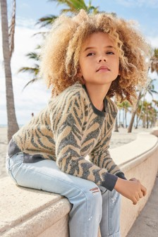 Animal Stripe Sweater (3-16yrs)