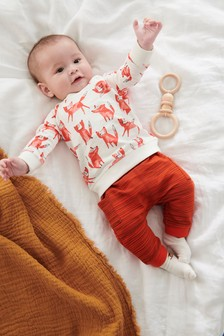 Fox Jumper And Joggers Set (0mths-2yrs)
