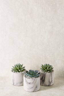 Set of 3 Artificial Succulent In Marble Effect Pot