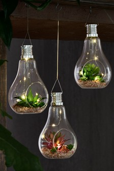 Set of 3 Solar Succulent Bulb Objet