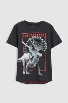 Dinosaur Graphic T-Shirt (3-16yrs)