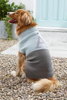 Size Extra Large Initial Dog Jumper