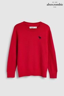Abercrombie & Fitch Icon Crew Neck Jumper