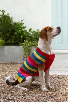 Bright Stripe Dog Jumper