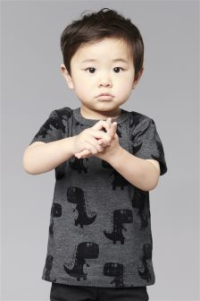 Dino Print Short Sleeve T-Shirt (3mths-6yrs)