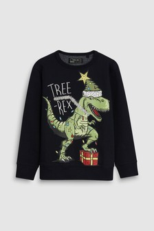 T-Rex Christmas Sweat Top (3-16yrs)
