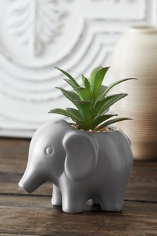 Artificial Succulent In Elephant Pot