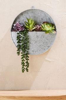نبات عصاري صناعي في إناء حائط