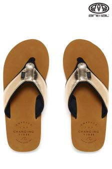 Animal Swish Toffee Apple Brown Flip Flops
