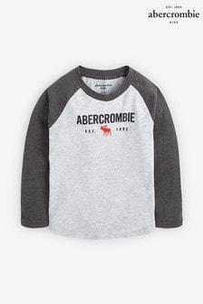 Abercrombie & Fitch Grey Long Sleeve Raglan T-Shirt