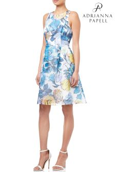 Adrianna Papell Blue Floral Ribbed Oraganza Dress