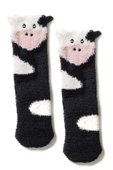 Socks In A Box