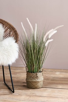 Artificial Grass In Wicker Basket