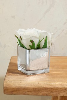 Artificial Roses In Silver Cube