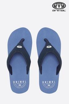 Animal Blue Bazil Flip Flop