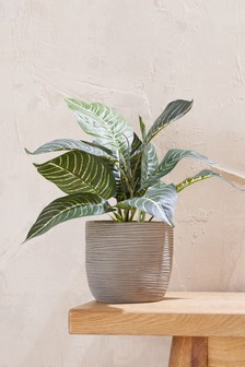 Faux Patterned Leaf Plant