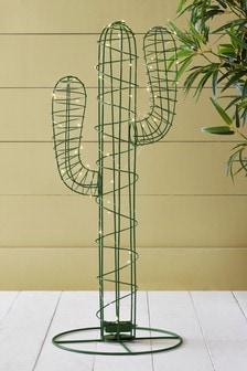 Cactus Solar Objet