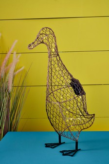 Duck Solar Objet