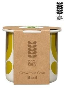 Orla Kiely Grow Your Own Basil Kit