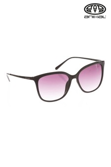 Animal übergroße Radiance Sonnenbrille mit Nieten, Schwarz