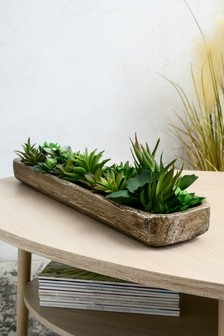 Artificial Succulents In Tray