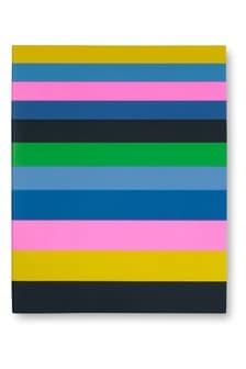 kate spade new york Enchanted Stripe Spiral Notebook