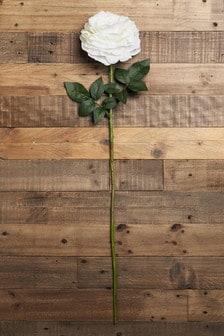 Large Rose Stem