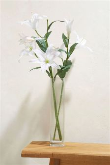 Tall Lily Collection Luxe Vase