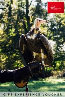 Introductory Falconry For Two Gift Experience by Virgin Experience Days