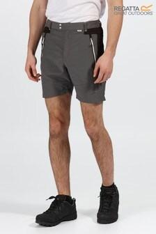 Regatta Grey Sungari II Shorts