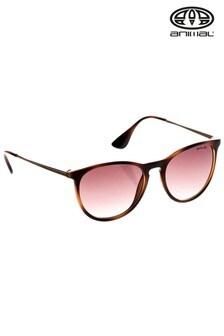 Animal Brown Spotlight Round Frame Sunglasses