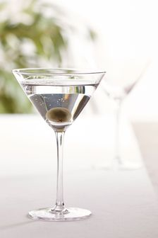 Nova Set of 2 Martini Glasses
