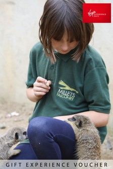 Junior Animal Keeper Experience Millets Falconry Gift by Virgin Experience Days