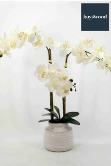 Bayswood 27 Inch Real Touch Orchid in a Ceramic Pot