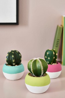 Set of 3 Artificial Cacti In Bright Pots
