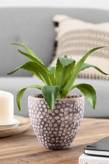 Artificial Aloe Plant in Pot
