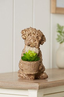 Artificial Succulent In Charlie The Cockapoo Pot