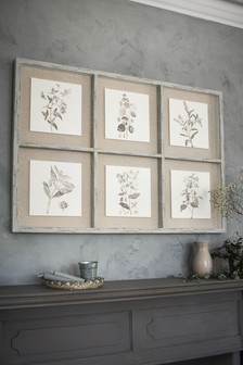 Botanical Montage In Wooden Frame