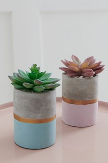 Set of 2 Artificial Succulents In Cement Pot