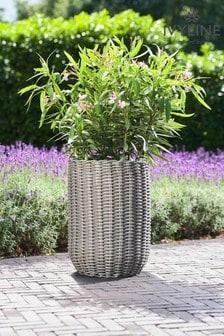 Set of 2 Polyrattan Planters by Ivyline