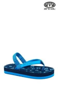 Animal Blue Goofey Flip Flops