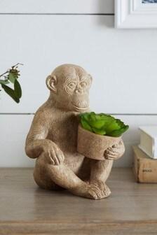 Artificial Succulent in Monkey Pot